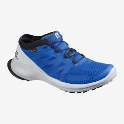 ZAPATILLA SALOMON IMPERMEABLE SENSE FLOW GTX lapis blue